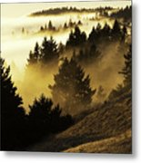 Bolinas Ridge Metal Print