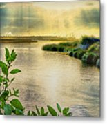 Bolsa Chica Bird Sanctuary Metal Print