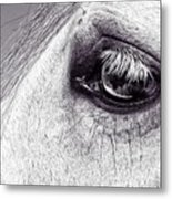Bonbon's Eye Metal Print