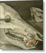 Bone Appetit Metal Print