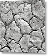 Bone Dry  Metal Print