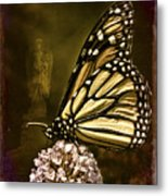 Boneyard Butterfly Metal Print