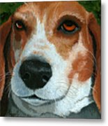 Bonnie - Beagle Painting Metal Print