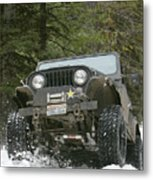 Booger On The Trail Metal Print