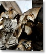 Book Burnning Metal Print