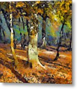 Booker Woods Metal Print