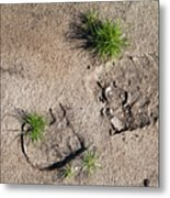 Boot Print In The Desert Metal Print