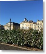 Bordeaux Beauty Metal Print