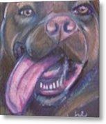 Bordeaux Mastiff Portrait Metal Print
