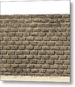 Border Wall Metal Print