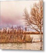 Bosque Winter II Metal Print