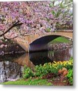 Boston Ma Spring Tree On The Charles River Esplanade Boston Ma Metal Print
