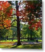 Boston Public Garden Autumn Tree Morning Light Walk In The Park Metal Print