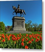 Boston Public Garden Tulips Boston Ma Metal Print