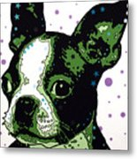 Boston Terrier Puppy Metal Print by Dean Russo