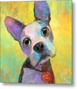 Boston Terrier Puppy Dog Painting Print Metal Print