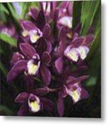 Botanic Garden Orchid Bouquet 5 Metal Print