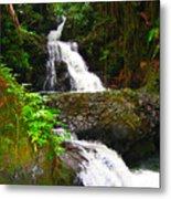 Botanic Gardens Waterfall Metal Print