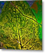Botanic Glow Metal Print