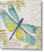 Botanical Dragonfly-jp3423b Metal Print