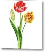 Botanical Tulip Bouquet Watercolor Metal Print