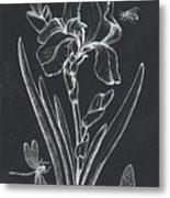 Botanique 1 Metal Print