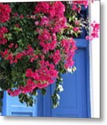 Bougainvillea And Blue Metal Print