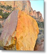 Boulder Color  Metal Print