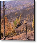 Boulder County Wildfire 5 Miles West Of Downtown Boulder Metal Print