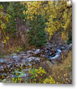 Boulder Creek Autumn View  Metal Print