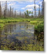Boundary Waters Beauty Metal Print