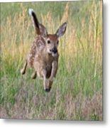 Bounding Bambi Metal Print