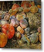 Bountiful Fall Harvest Metal Print
