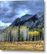 Bow Valley Parkway Banff National Park Alberta Canada IIi Metal Print