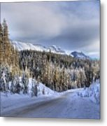 Bow Valley Parkway Winter Scenic Metal Print