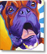 Boxer - Chance Metal Print by Alicia VanNoy Call