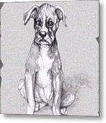 Boxer Pup Metal Print