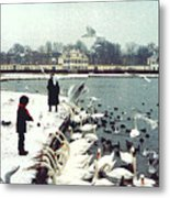 Boy Feeding Swans- Germany Metal Print