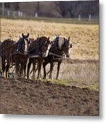 Boy Waiting With Horses Metal Print