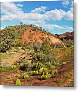 Bracchina Gorge Flinders Ranges South Australia Metal Print