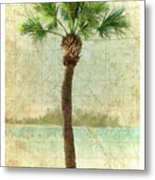 Bradenton Palm Metal Print