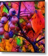 Bradford Pear In Autumn Metal Print by Judi Bagwell