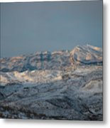 Bradost In The Winter Metal Print