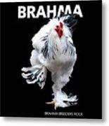 Brahma breeders Rock t-shirt print Metal Print