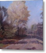 Braim Road Metal Print