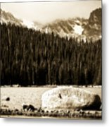 Brainard Lake Metal Print