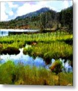 Brainard Lake Rocky Mountain National Park Metal Print