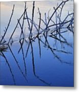Branch Reflections 484 Metal Print