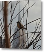 Branch With A View Metal Print