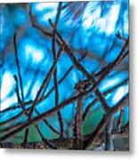 Branches 23 Metal Print